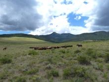 Colorado 2010 056